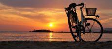 BikeUnique
